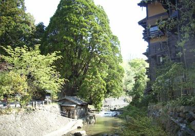 黒川温泉の風景づくり